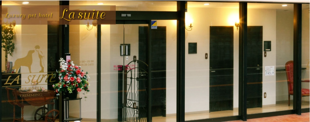 Luxury pet hotel La suite